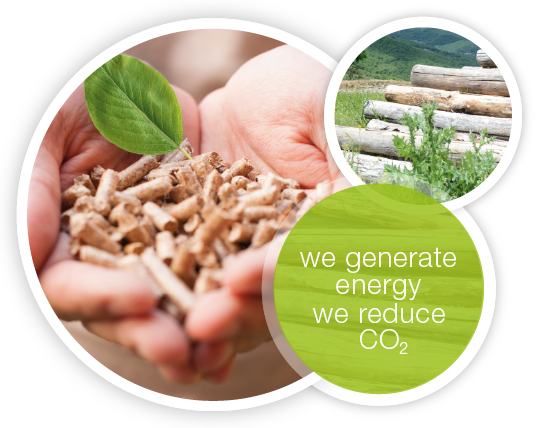 Biomass: an opportunity to be exploited